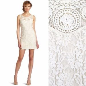 C. Luce Fitted Ivory Lace Cocktail Dress